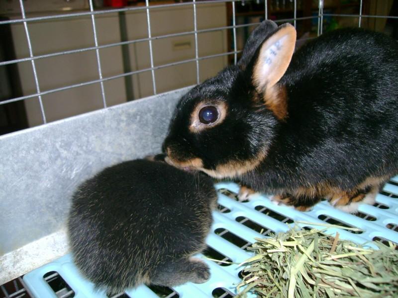 Tanita and baby Diega